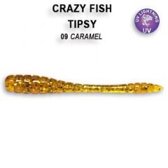 """Силиконовые приманки Crazy Fish Tipsy 2"""" 9-50-9-6"""
