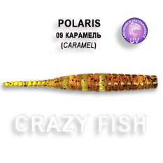 Мягкая приманка Crazy Fish POLARIS 5-4.5-9-6